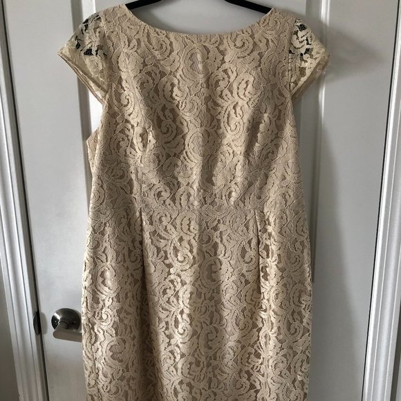 J.Crew Elsa Dress in Leavers Lace